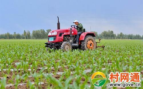 重磅|我国进入农业托管时代(附6大模式、4类玩家)